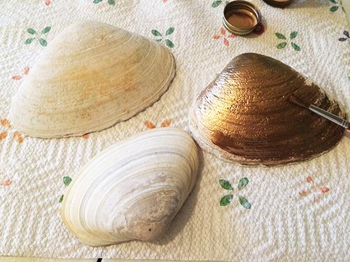 1.shells1